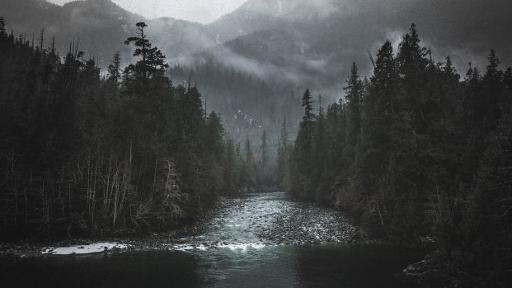 Voice-ov-the-wilderness
