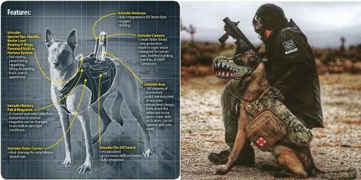 Man-s-Tactical-Best-Friend-1