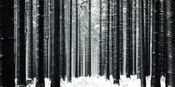 German-Black-Forest-Winter-1