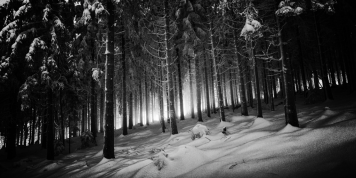 Landscapes-German-Forest-Winter-1