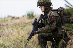 Feature-Danish-Royal-Army-II-T2